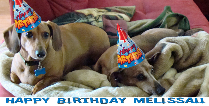Happy birthday melissa